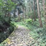 東海道五十三次 9日目:島田ー金谷ー日坂ー掛川