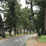東海道五十三次 12日目:吉田ー御油ー赤坂ー藤川ー岡崎