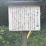 IMG_8910